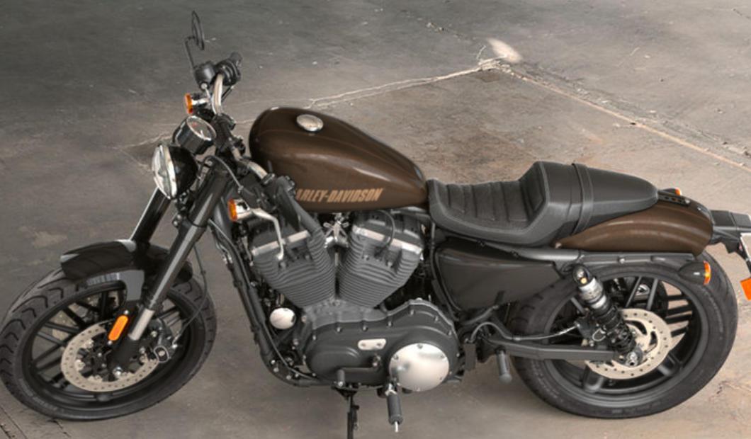 Harley Davidson Roadster  Custom