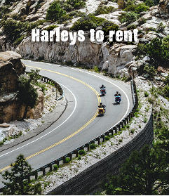 Harleys to rent